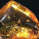 Камни знака зодиака Лев. Янтарь